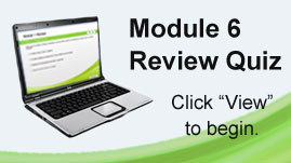 SB1 Module 6 Review Quiz