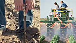 Careers in Agricultural and Environmental Technologies