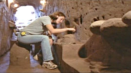 Archaeologist Studying the Maya