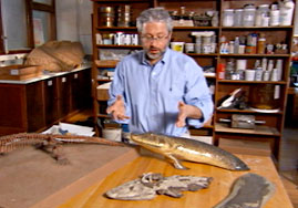 Paleontologist with Tiktaalik Models