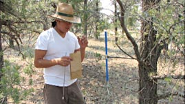 Dendroclimatology in the Navajo Nation