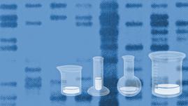 Create a DNA Fingerprint