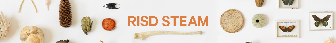 RISD STEAM