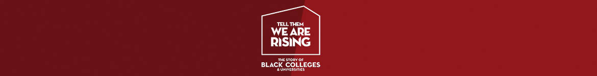tell-them-we-are-rising-collection-banner