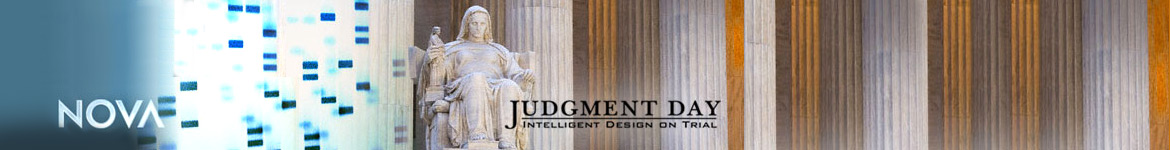 NOVA: Judgment Day: Intelligent Design on Trial Collection