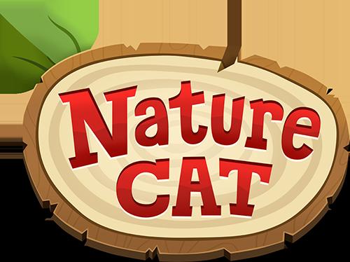 Nature Cat | Clip | Let's Build a Sailboat