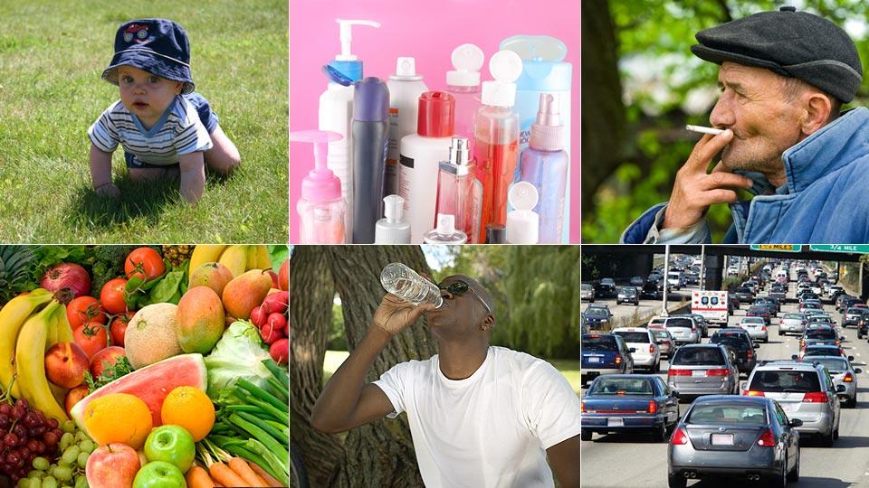 Teaching Environmental Public Health: An Introduction